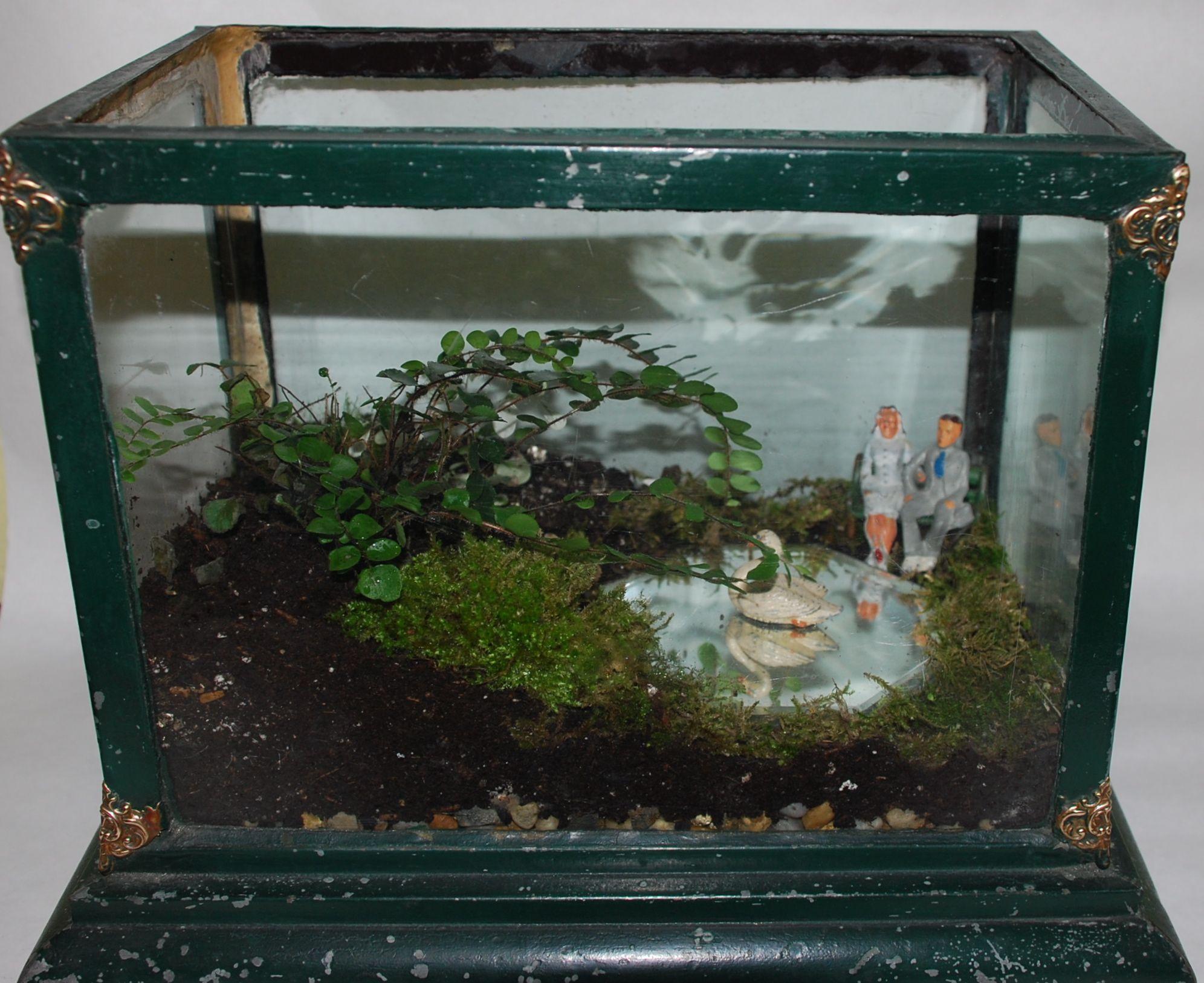 Park terrarium in antique fish tank glass world studios