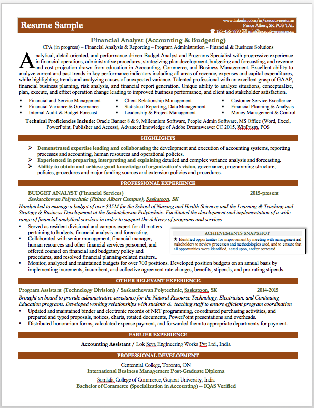 Professional Branded Resume Sample. Financial Analyst