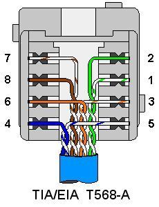 Rj45 Wall Jack Wiring Diagram : wiring, diagram, Terminating, Wiring, Plates,, Cat5,, Coaxial,, Phone,, S-video,, Electronics, Basics,, Computer, Projects,, Ethernet