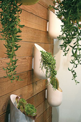 Group Modern Hanging Planters Idea For The Large Wall On Right As You Enter Walkway