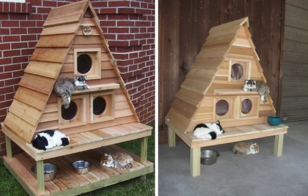 10 Amazing Cat Structures Outdoor Cat House Cat Houses Indoor Cat House Plans
