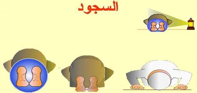 تعليم الصلاة للمبتدئين Mario Characters Character Fictional Characters