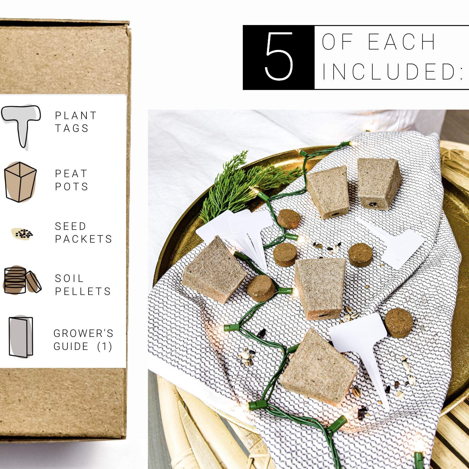 Winter Indoor Garden Kit Herb Garden Seed Starter Kit For