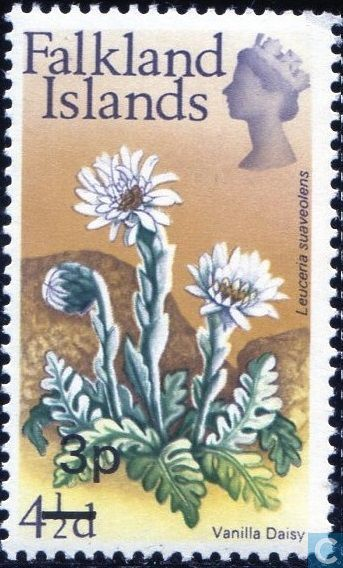 Postage Stamps - Falkland Islands - Native flowers