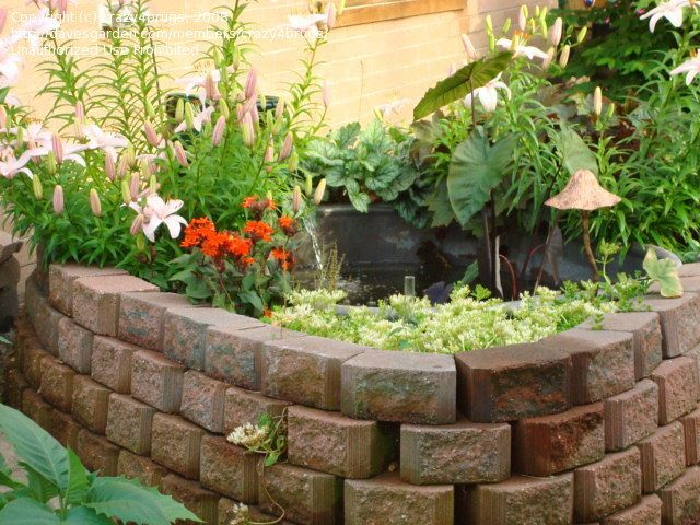 Cheap Raised Garden Ponds Ideas Water fountains add a peaceful sound ...