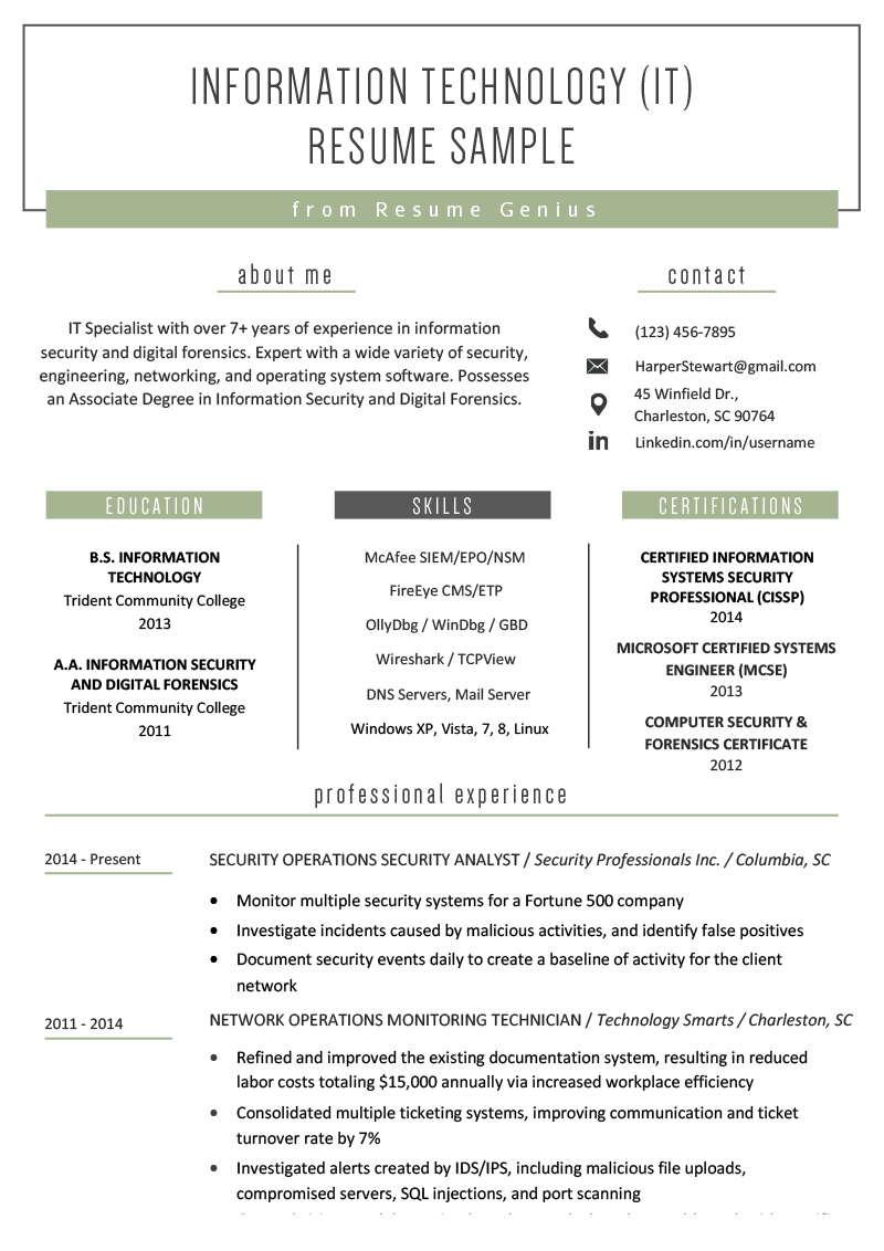 Information Technology It Resume Sample Resume Genius Professional Resume Examples Resume Objective Examples Job Resume Examples