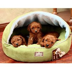 Kingpets Hamburger Bed Jacquard Style Small 50x44cm Buy From Pet Planet On The Uk High Street Pets Washable Dog Bed Washable Pet Bed
