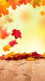 Cute Live Wallpaper Autumn Inspiration Beauty 2 Fall Wallpaper Desktop Wallpaper Fall Iphone Wallpaper Fall
