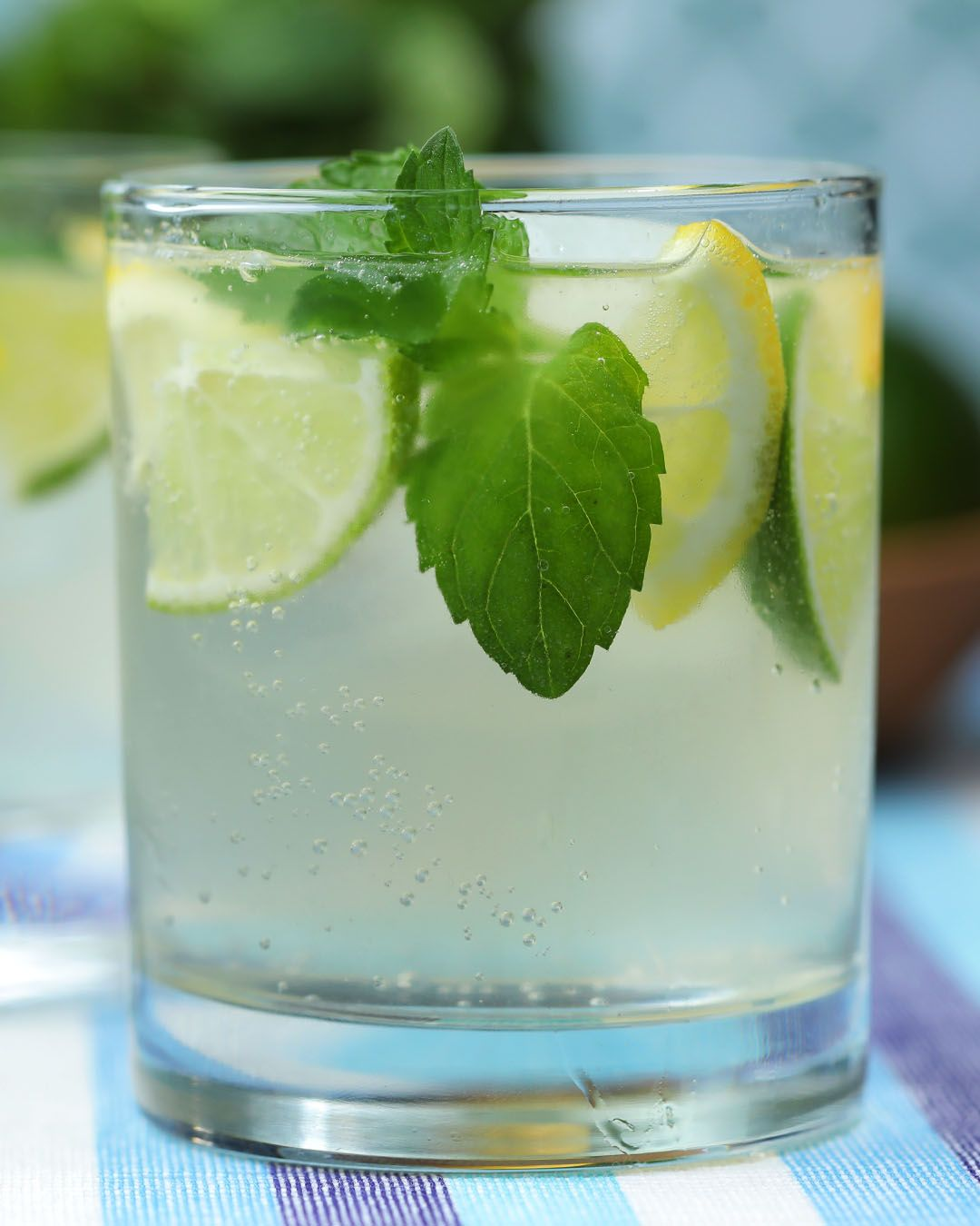 Vodka Tea Mojito