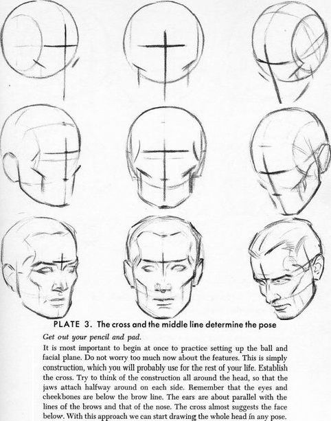 How To Draw The Male Head Face Drawing Anatomy Sketches Step By Step Drawing