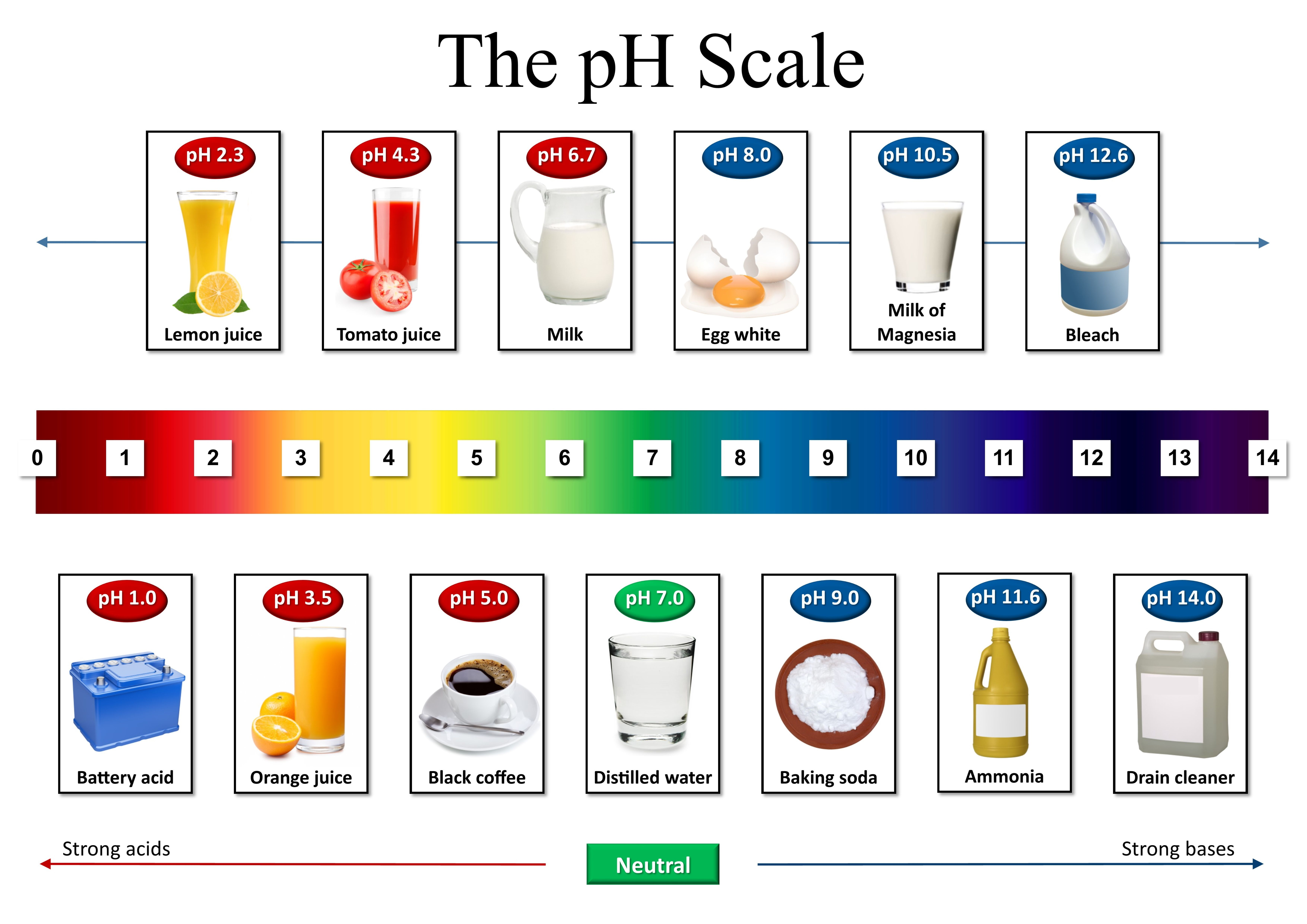 Ph Scale Chemistry Science Art Home Or Office Decor