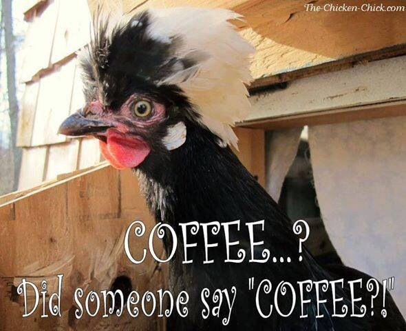 Coffee please......