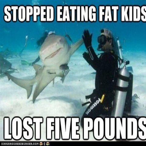 Geekmundo Comic Con Shark Week Memes Sharks Funny Animal Jokes