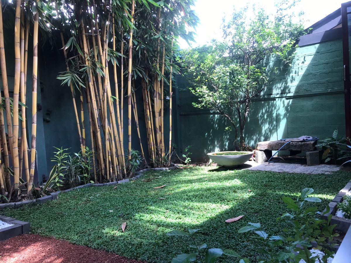Pin By Dilakshan Perera On Small Garden Ideas Rajagiriya Sri Lanka Small Gardens Small Garden Tree