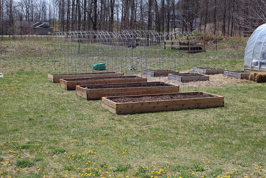 Delicieux I Added Cattle Panel Trellises To My Large Raised Garden Beds To Form Long  Lasting,