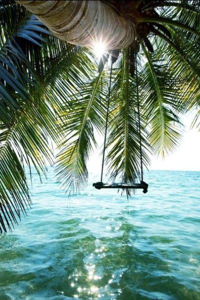 Sommer Tropical Familie Palmen Strand Frauen Premium