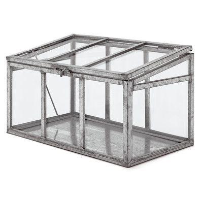 zimmergew chshaus glas und stahl manufactum m bel. Black Bedroom Furniture Sets. Home Design Ideas