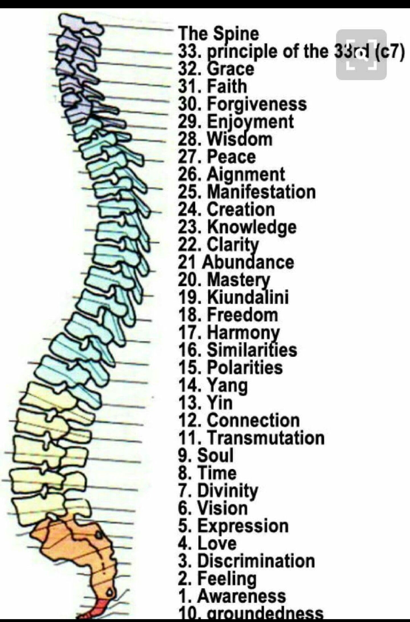 Pin by Jake Cabrera on nervous system | Pinterest | Healer, Chakras ...