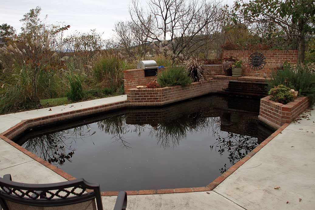 A Koi Pond will be a great conversation starter at your