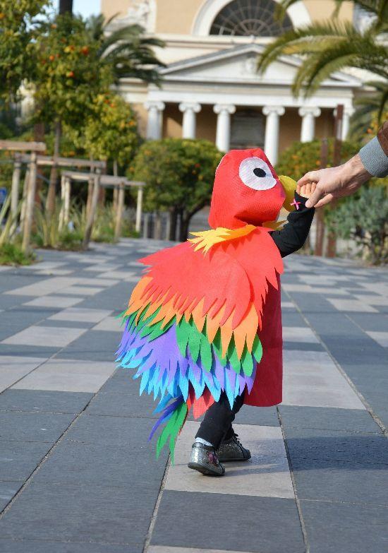Mon bel Ara de carnaval  déguisement Pinterest Parrot costume - 1 year old halloween costume ideas