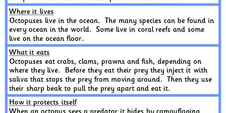 Writing a Non-Chronological Report and Activity Sheet