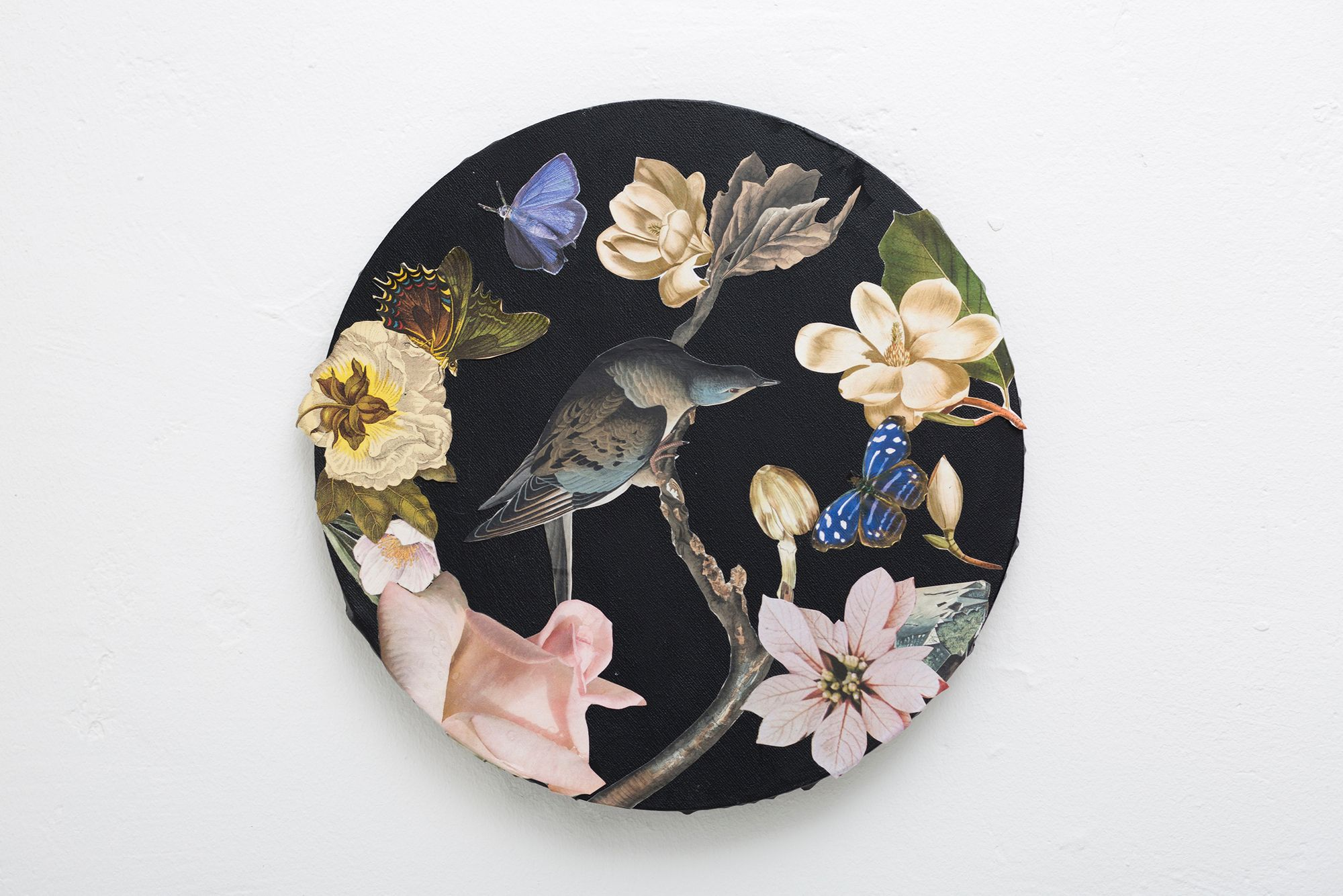 Mixed media collage on canvas by Clare Celeste. A lush round composition of flora and fauna. .  . #cutandpaste #artiststudio #collageart #contemporaryart #collagecollectiveco #collagesociety #welovepaper #lgenpaper #acolorstory #paperartistcollective #artonpaper #artofvisuals #inspiredbypetals #allwhatsbeautiful #allthingsbotanical#createeveryday #artmagazine #contemporaryart #calledtobecreative #natureandart #natureart