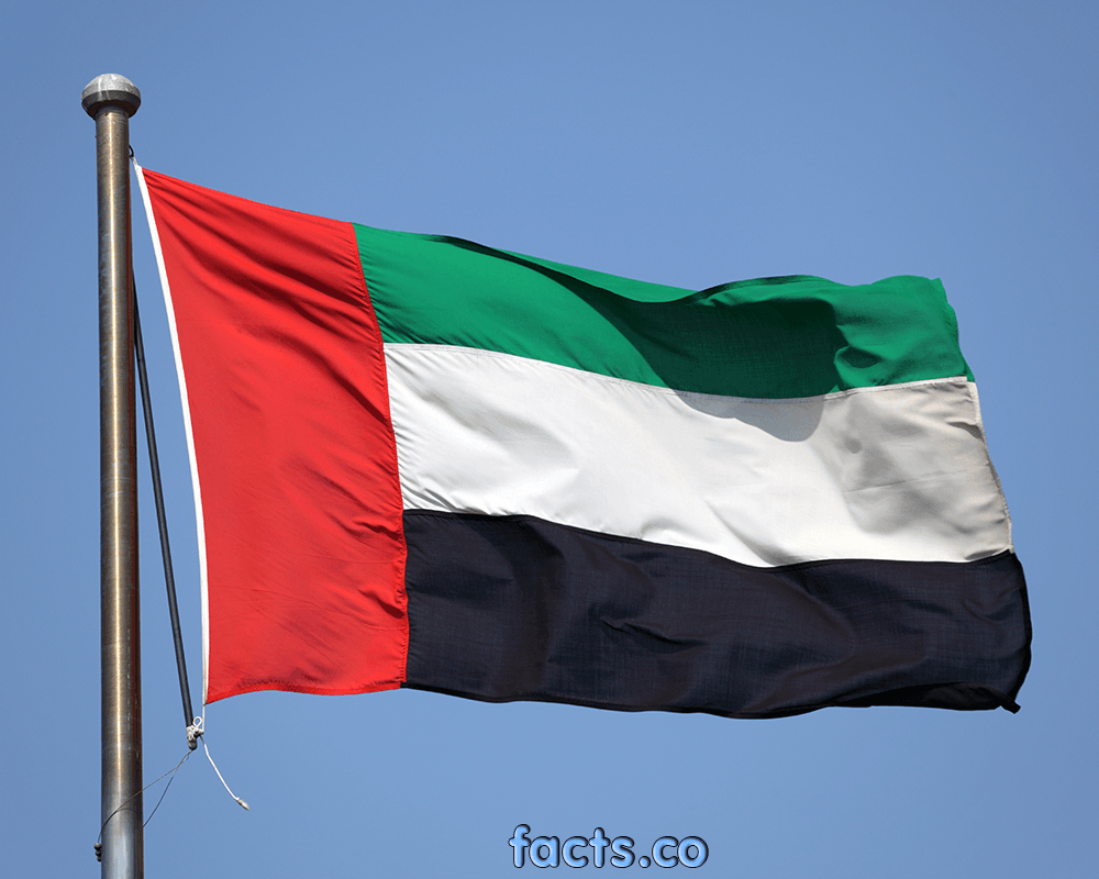 Uae Flag All About Uae Flag Colors Meaning Information History Uae Flag Flag Colors Color Meanings
