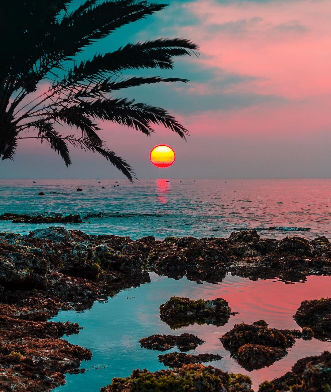 Island Beach Sunset: #korea #sunset #colors (With Images)