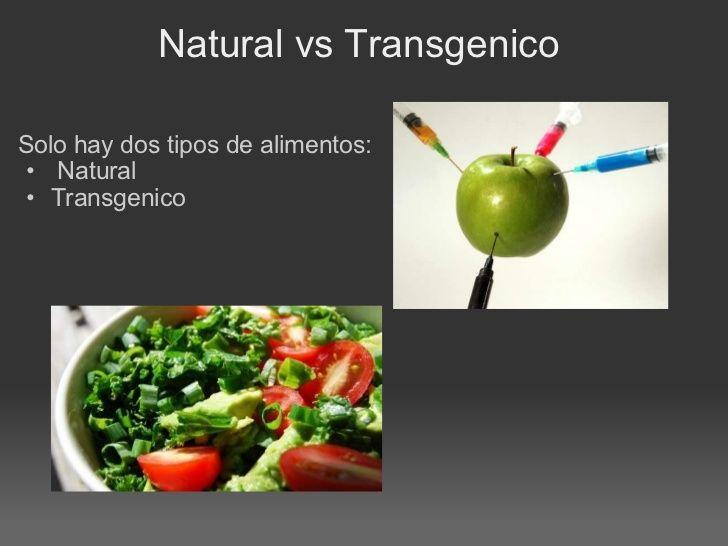 Alimentos Transgenicos Ventajas Y Desventajas Google Search Health Health Fitness