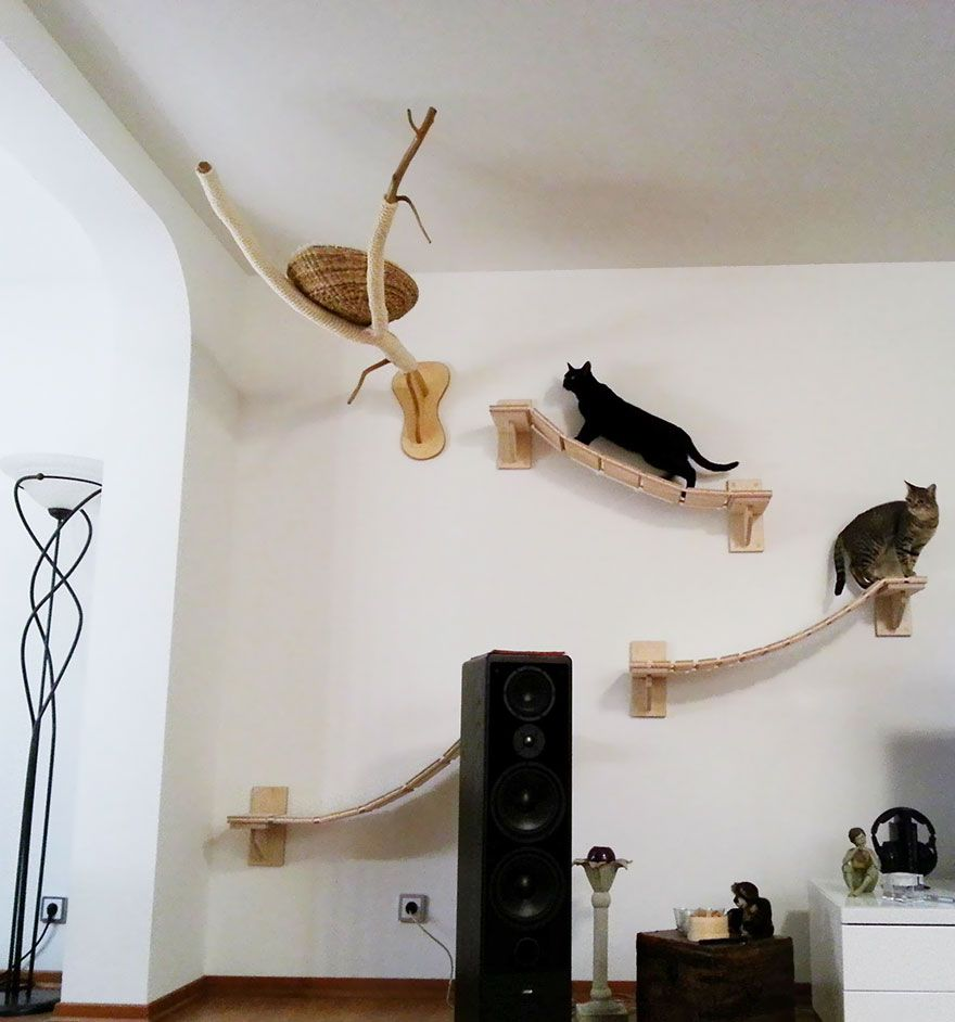 Arbre A Chat Mural Design rooms transformed into overhead cat playgrounds with