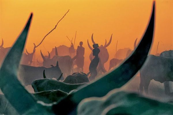 34 Amazingly Beautiful Pictures of the Sudanese Dinka