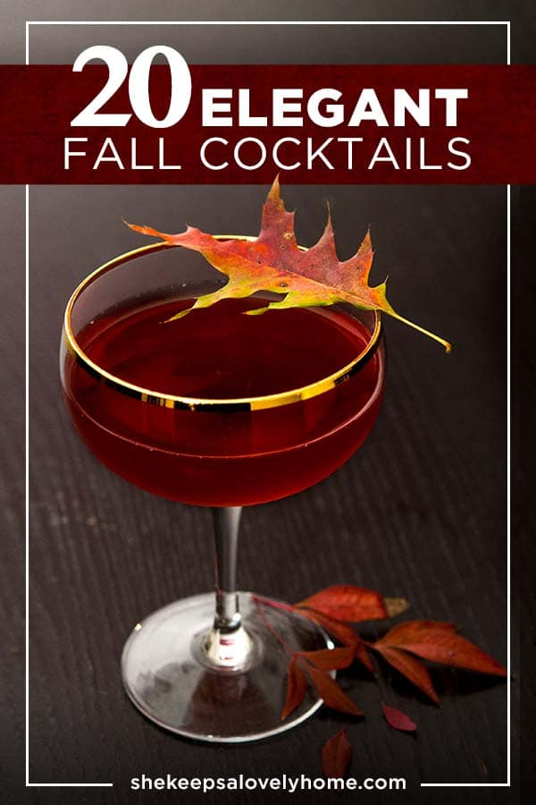 20 Elegant Fall Cocktails