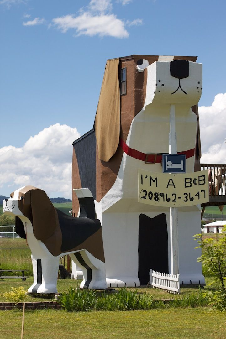 Elegant Dog Bark Park Inn Is A Quirky Hotel In Idaho Shaped Like A Dog Pictures Gallery