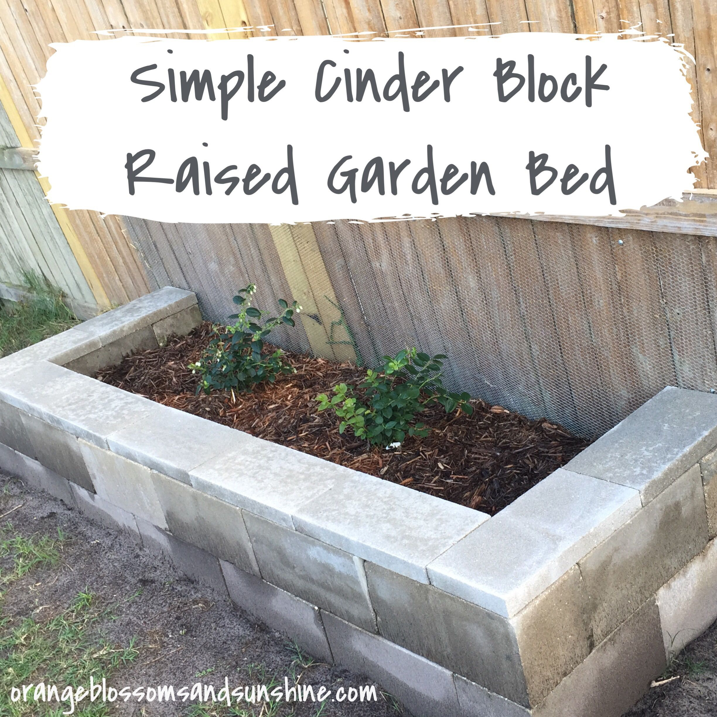 Cinder block raised bed. Then. | Cinder block garden ... |Cinder Block Flower Bed Plans
