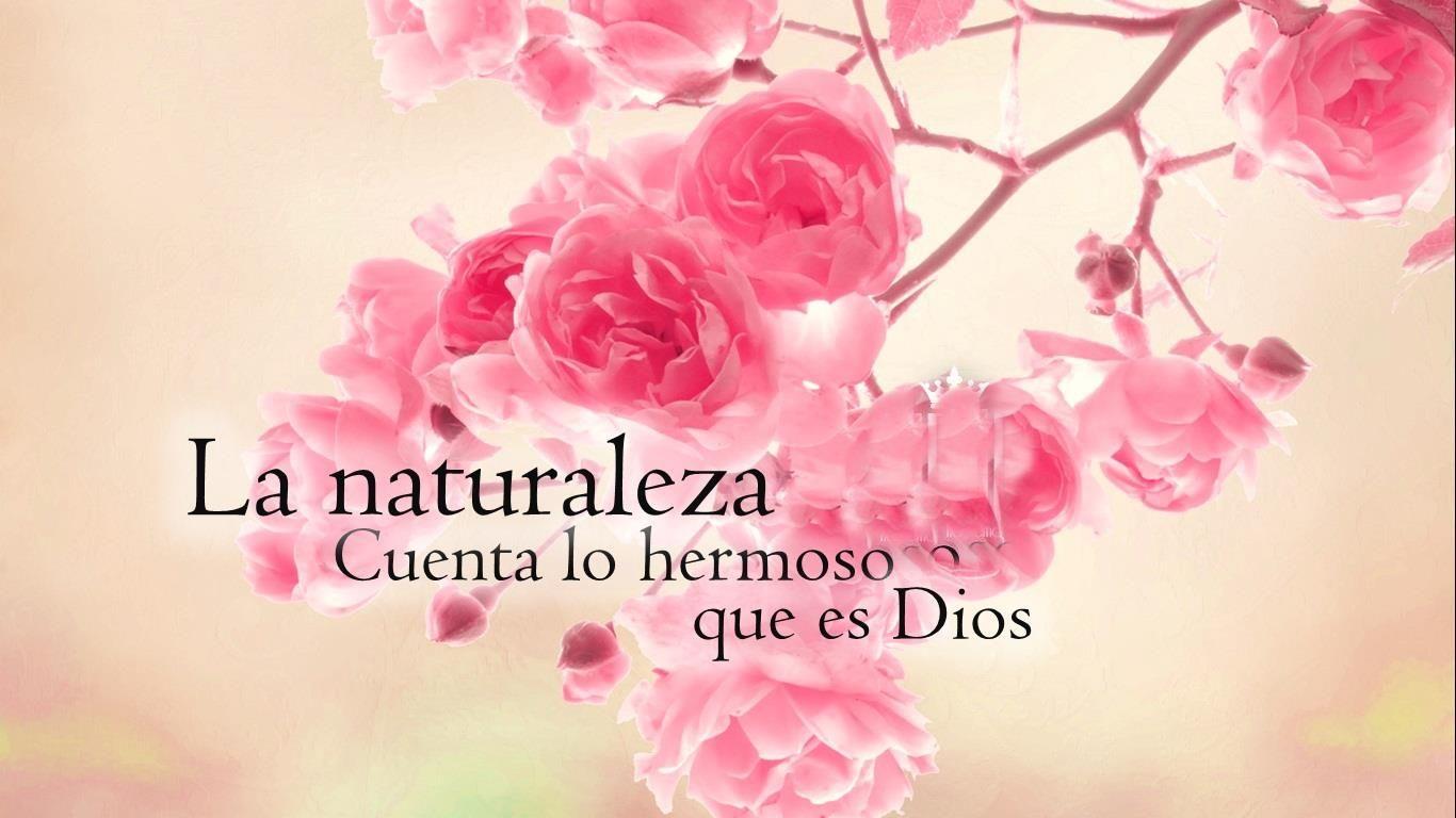 La naturaleza cuenta lo hermoso que es Dios frases cristianas