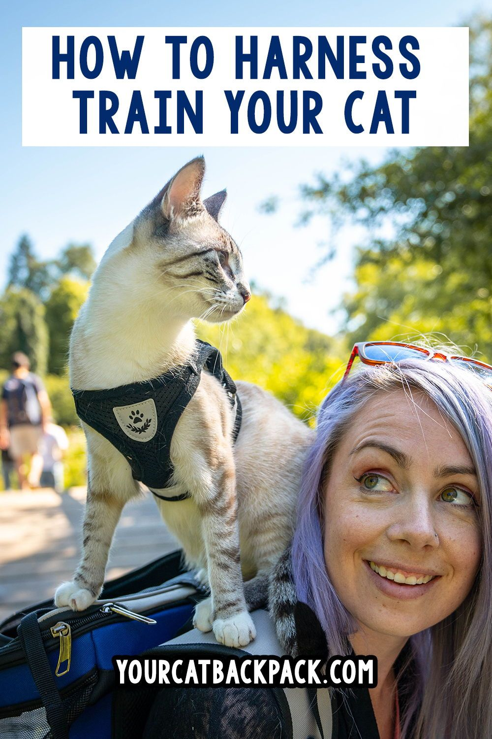 How To Walk Your Cat On A Leash 7 Easy Steps Fluffy Kitty Leash Training Your Cat To Walk On A Leash In 7 Simple Steps Guide Cat Leash Cat Training Cats