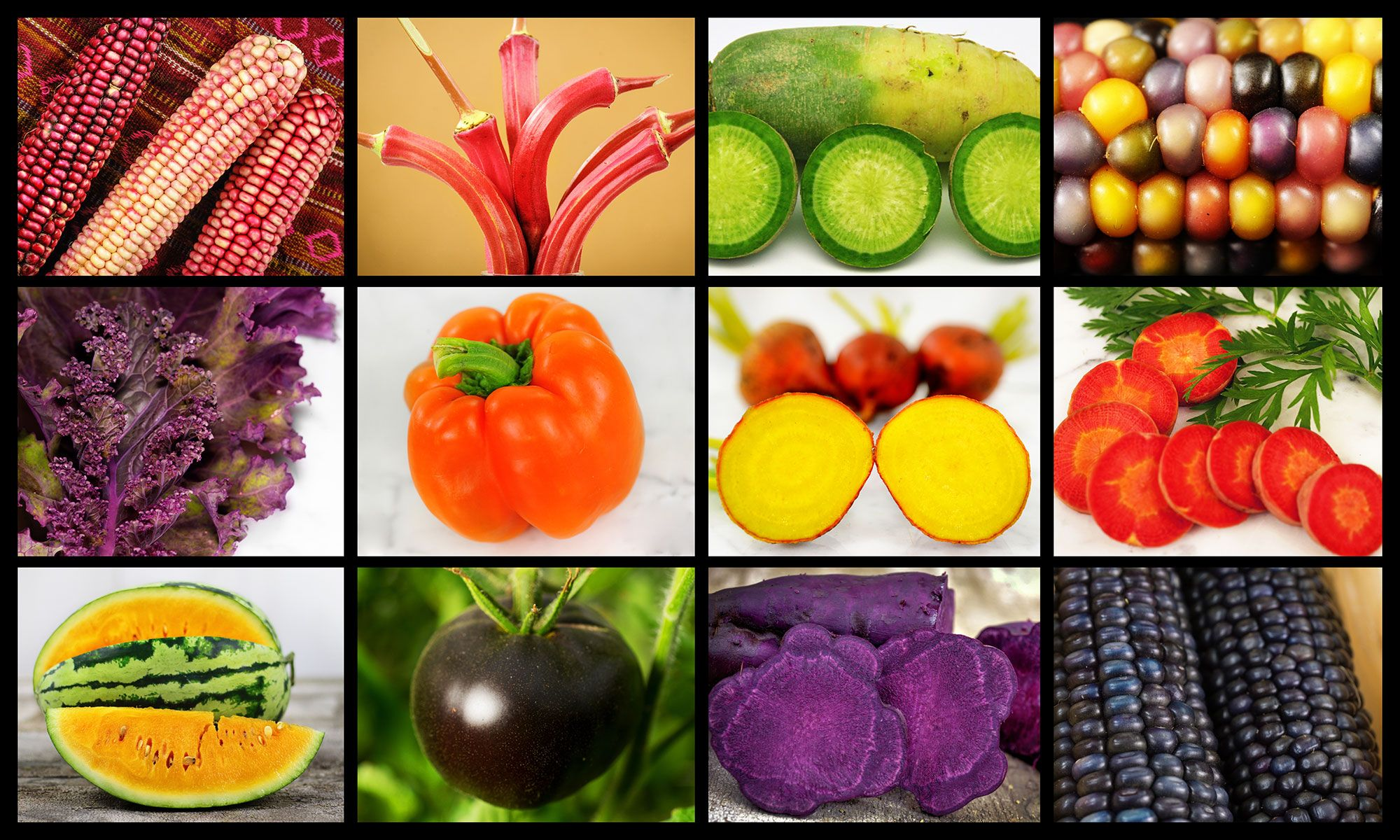 Buy Heirloom Garden Seeds Vegetables Rare Flowers And Herbs