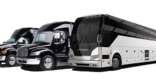 Mini Coach Chicago In 2020 Party Bus Rental Traveling By Yourself Party Bus