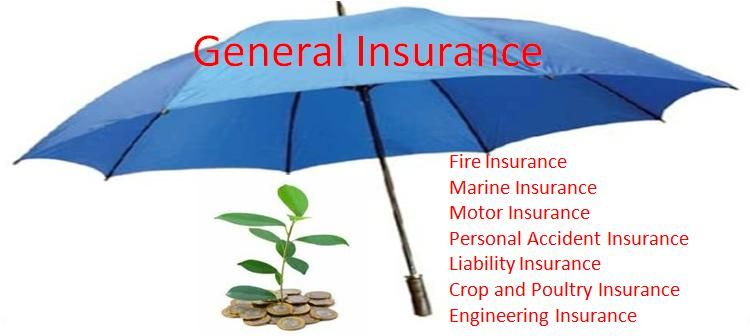 Image result for images of general insurance