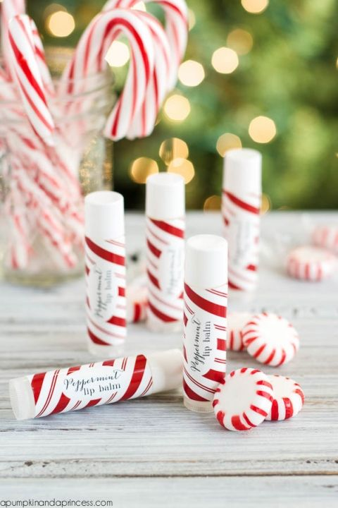 Photo of Homemade Peppermint Lip Balm