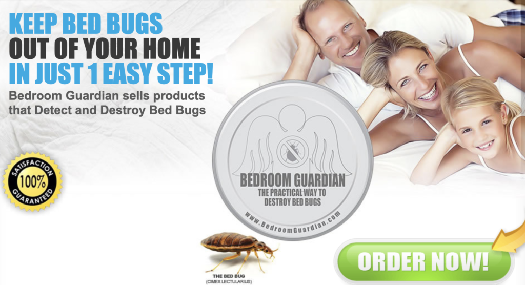 Dead Bed BugsWhat Should I Do Now? Get Rid Bed Bugs