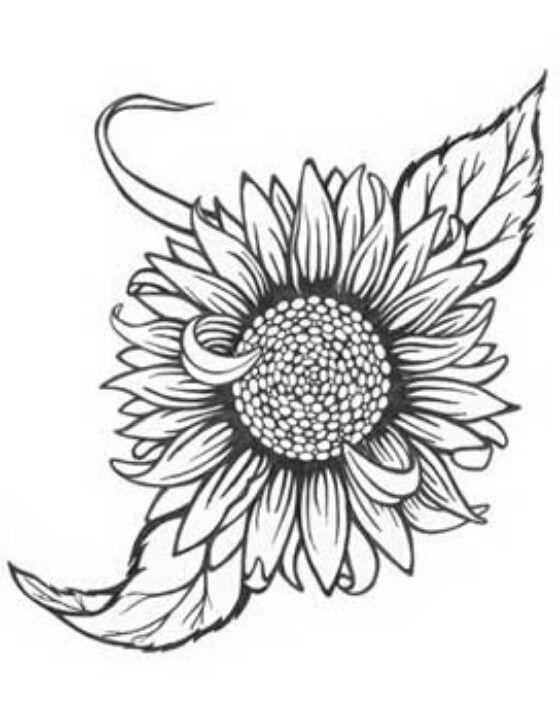 Pin By Kelsi Minch On Filler Tattoo Ideas Sunflower Tattoo