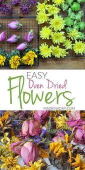 Mühelose Ofen-Trockenblumen für Handwerk – Blumen Blog