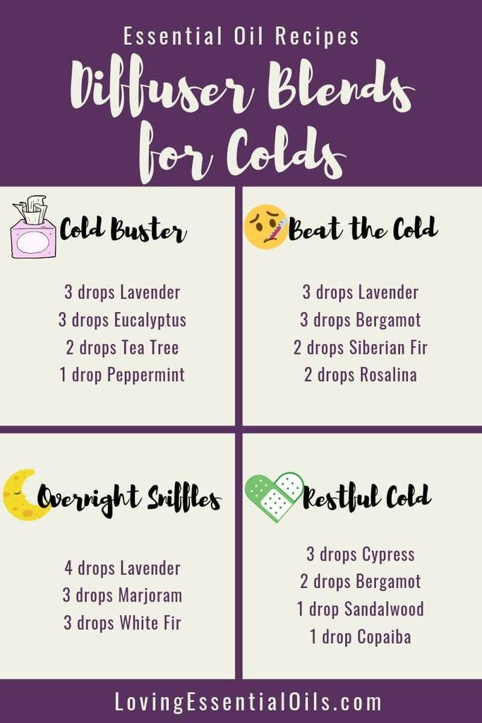 6 Diffuser Blends For Colds With Free Essential Oil Cheat Sheet Recipe Essential Oils For Colds Free Essential Oils Essential Oil Blends