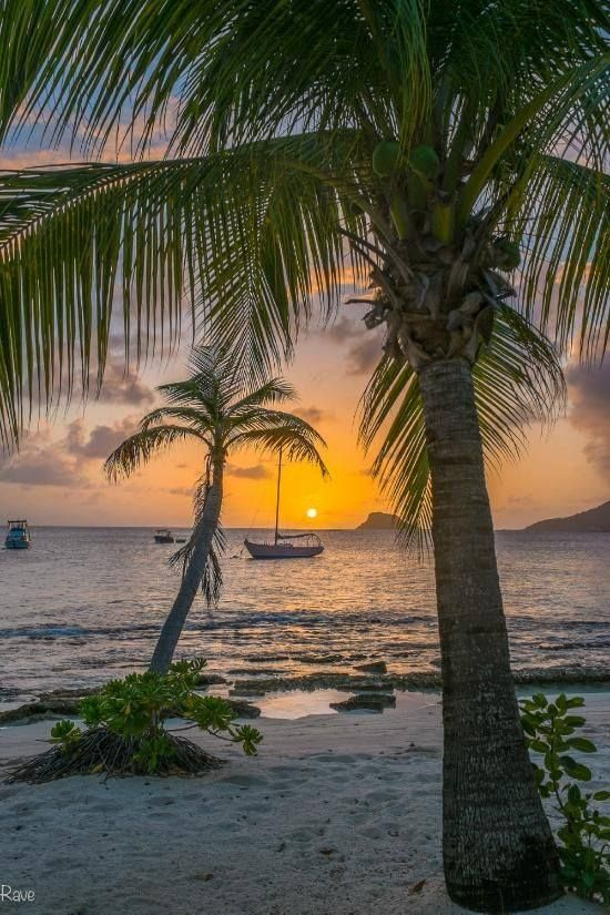 View from the Sunset Grill Bar on Palm Island, the Grenadines