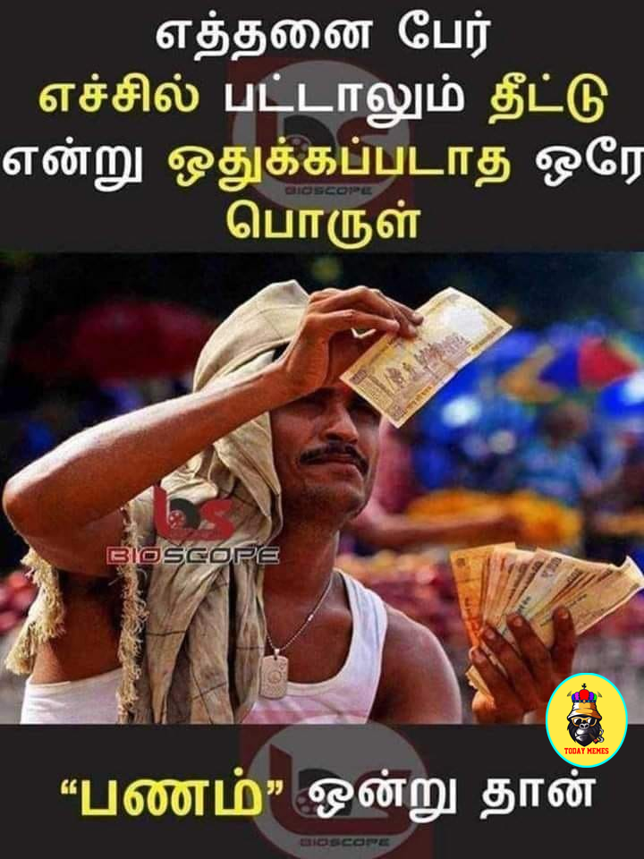 Pin by Mytodaymemes on Memes Photo album quote, Tamil