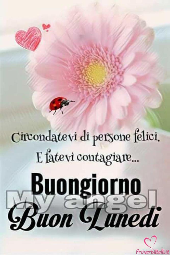 Buongiorno luned immagini per whatsapp buon lunedi good night good for Buon lunedi whatsapp