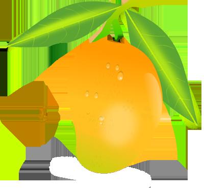 Mango Png Image Mango Images Fruits Images Fruits Drawing