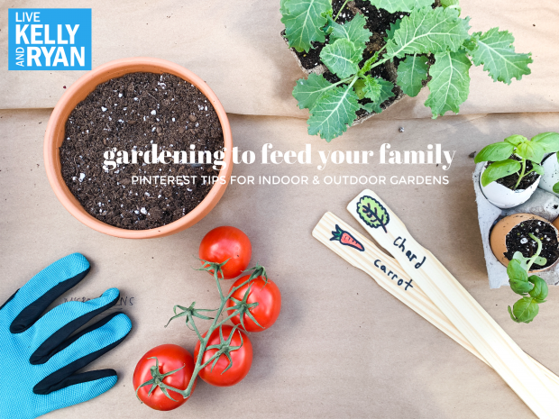 Pin On Live Family Gardening Tips