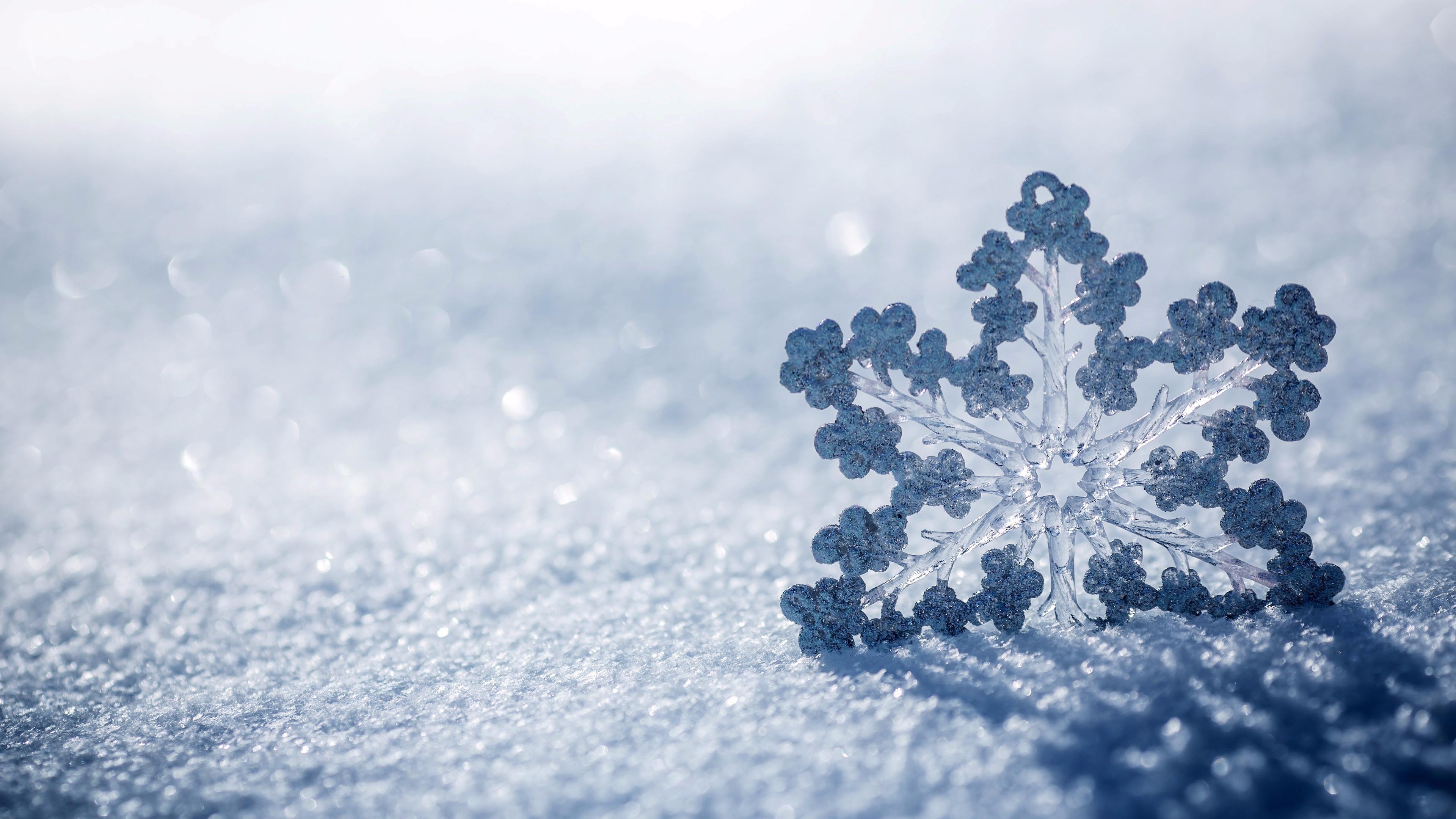 Snowflake In The Snow K Ultrahd Wallpaper Wallpaper Studio  Tens Of Thousands Hd